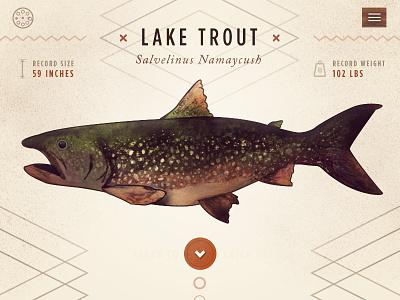 Reel Fishing Guide outdoors web design responsive nature illustration watercolor app ui