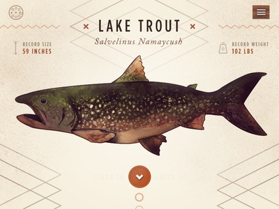 Reel Fishing Guide outdoors web design responsive nature illustration watercolor app ui