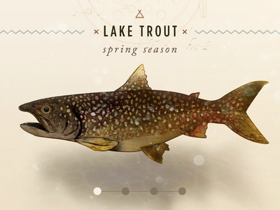 Seasonal Lake Trout web design responsive nature illustration watercolor app ui
