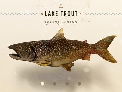 Seasonal Lake Trout web design responsive nature illustration watercolor app ui