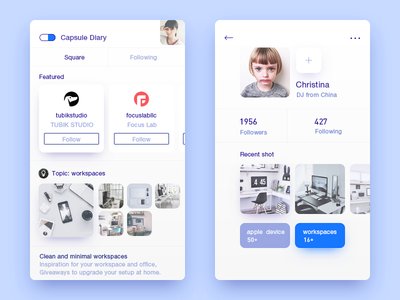 Capsule Diary  ux ui interface interaction inspiration device demo connect clean time diary apple