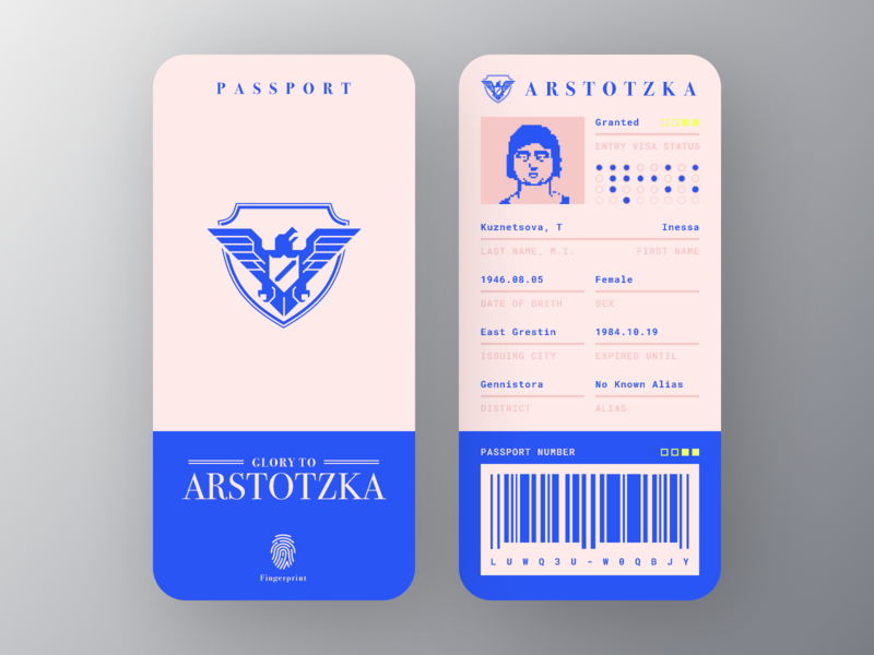 Papers Please Passport visa passport game papers please mobile app design ui dailyui figma