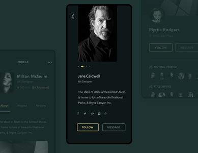 Users Profile UI