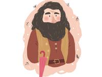 Rubeus Hagrid from Harry Potter movie