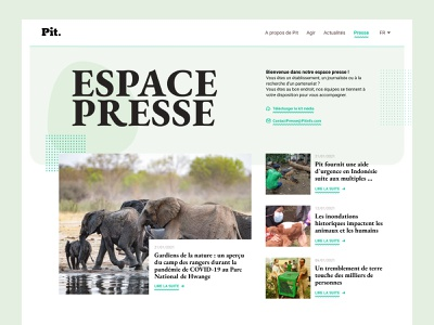 Daily UI #51 - Press Page serif font serif pastel color pastel elephant webdesign web ui design interface ui colors design daily ui daily 100 challenge