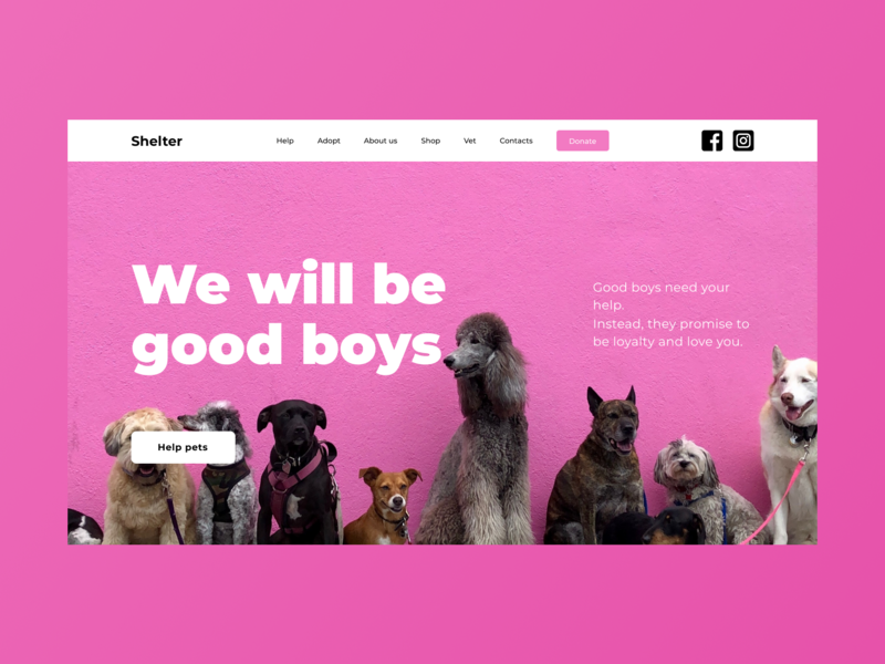 Shelter web lettering simple typography design