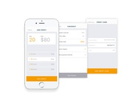 Payment process — Shotl app