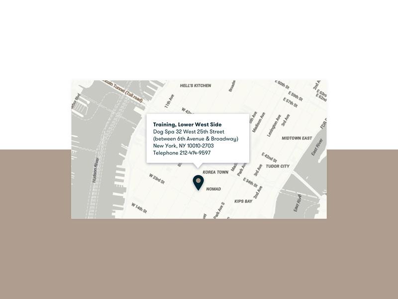 Custom map — Andrea Arden website userinterfacedesign mobiledesign dogtraining digitaldesign websitedesign websitecomponent responsivewebsite