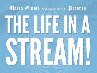 The life in a stream logo blue typography claim