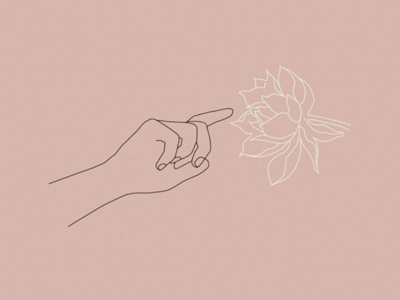 touch the beauty line touch artwork hands minimalism vector spring flower illustration design art line art