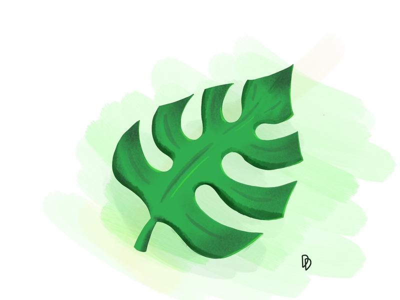 Leaf procreate brush green nature leaf try sketch illustration design artwork