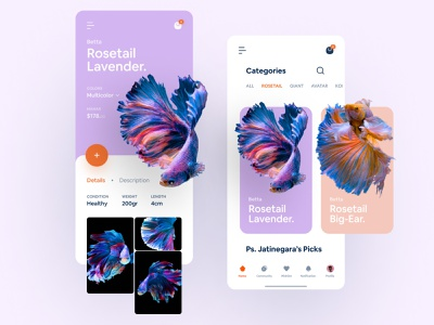 #Exploration - Betta Fish eCommerce pet animal app ui ux ui simple clean design gallery category app mobile card product card detail product betta fish ecommerce shop