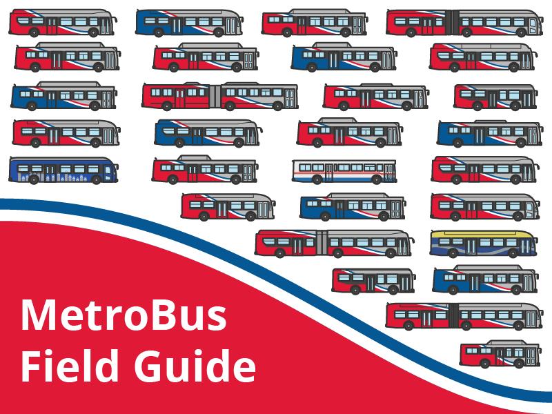 Metrobus Field Guide dc washington bus city transportation public transit