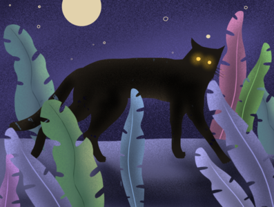 Cat at night illustration art illustrator art illustration procreate