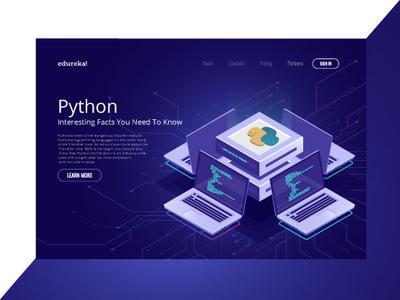 Facts about Python web ux ink art icon image vector desiginspiration colour collective branding design concept art illustration ui