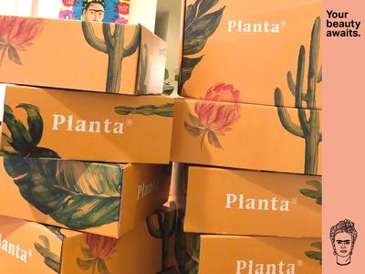 Planta Packaging