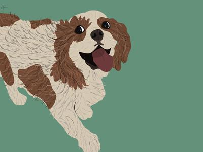 pupper puppy flat minimal vector illustration design