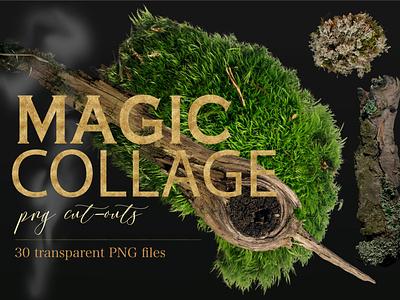 Magic collage. Scene Creator Mockup twigs bark forest mystic moss mood boards presentations branding sacred collage