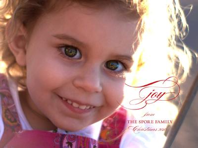 Our Family Christmas Card 2010