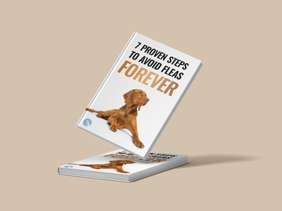 Avoid fleas forever illustration minimalist minimal modern professional elegant creative booklet kindle vector book 3d book cover design books ebook cover book cover design book cover kindlecover branding