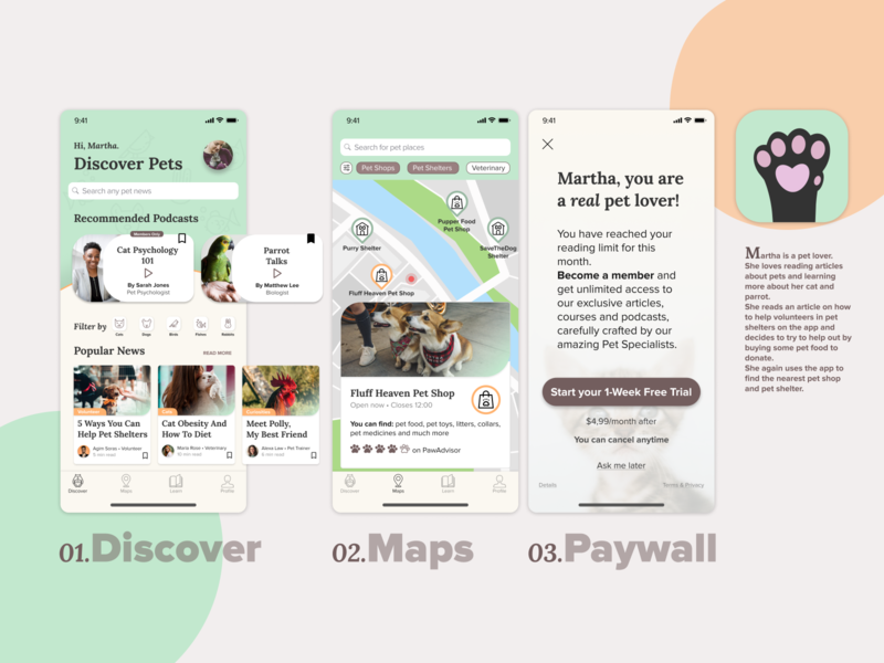 Designflows 2020 | Discover Pets