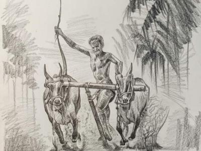 Farmer boy sketch