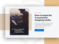 Ecommerce Shopping Modes eBook