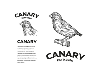 Canary illustration / Logo adobe identity designer identity design branding design logo design designs illustration art illustrations illsutration artist artwork art adobe illustrator branding logo logos logodesign designer design art design