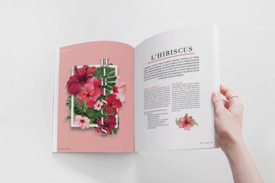Magazine Layout and Photomontage
