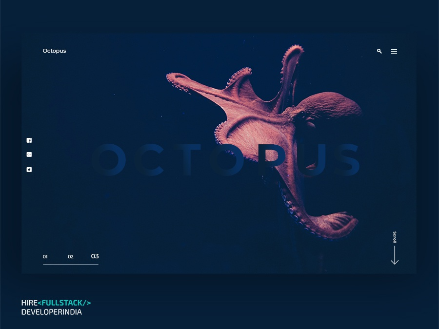 Octopus android app
