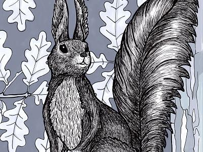 Squirrel I marker pen oak drawing squirrel