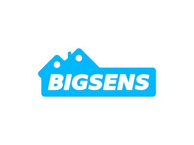 Bigsens — Smart House identity house flat simple logotype polished structure schema branding logo iot