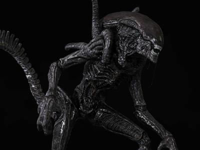 Xenomorph - Alien monster fan art pixologic sci fi hr giger photogrammetry xenomorph ridlescott 3d keyshot aliens alien zbrush substance painter autodesk maya digitalart digital 3d cgi 3d artist 3d art