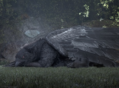 Black Gryphon - Lying in a forest