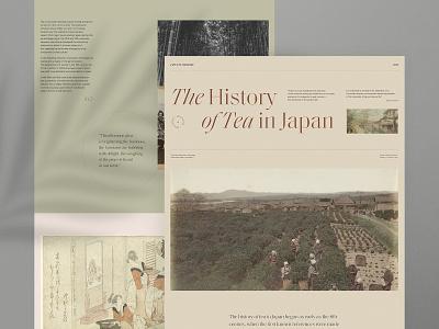 Historical website outline2design o2d concept webdesign typography branding homepage