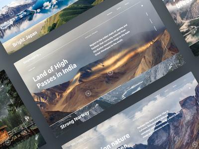 Symphonytrip encyclopedia nature video ux ui design webdesign outline2design o2d concept