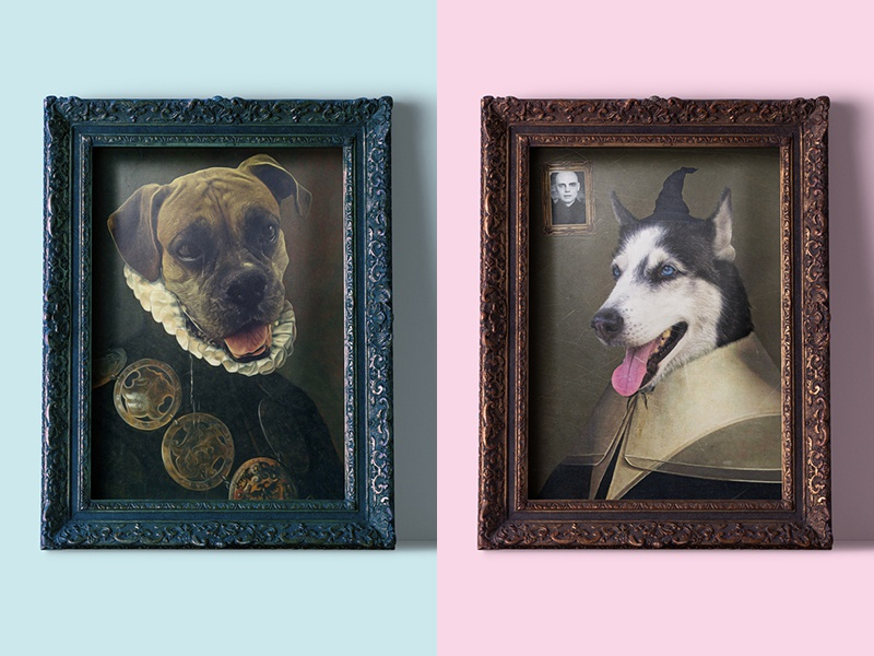 Pet Portraits manipulation portrait dogs family pets digital art photoshop