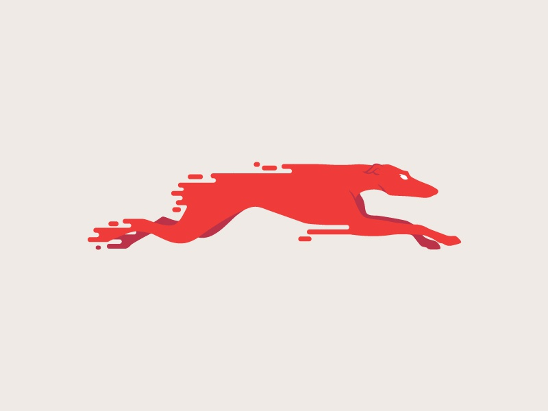 Red fast dog 800x600
