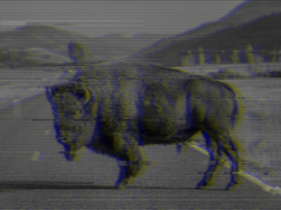 GlyTch adobe photoshop animal art bizon animal glitch effect glitch art glitch