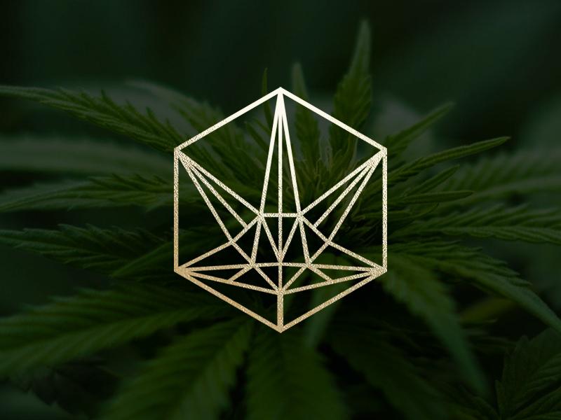 Cannabis Leaf Logo geometric cbd oil cbd hemp cannabis minimal identity nature supplement logodesign logo