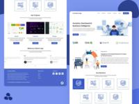 Website - Analytics based company