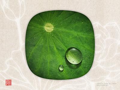 Dewdrop on a lotus leaf by Photoshop draw photoshop leaf lotus water-drop dewdrop