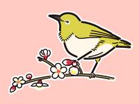 Plum blossom and white-eye (Illustration material)