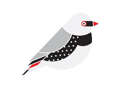 WIP – Diamond Firetail V2 birds bird illustration