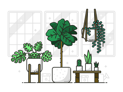 Plant Life outline tree fig cactus bench line stroke vector illustration icon houseplants plant