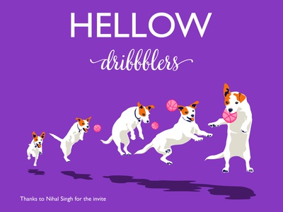 1    Hellow dribbble!   2 newplayer firstshot debut dog vector illustration