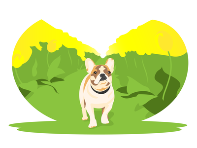 French bulldog april tulips tulip bloom blossom flower springtime spring bulldog dog vector illustration french bulldog