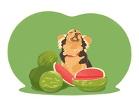 A dog with a watermelons
