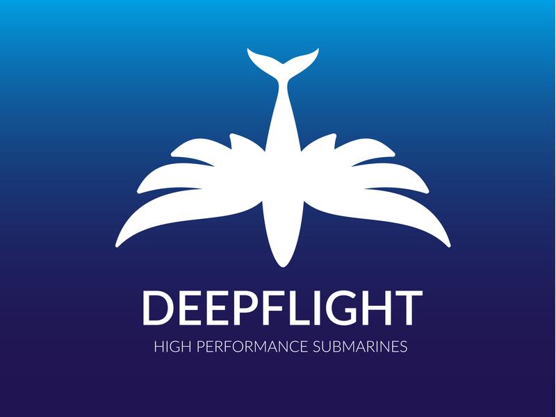 Deep Flight Logo clean graphic design identity illustrator flat typography design logo vector branding