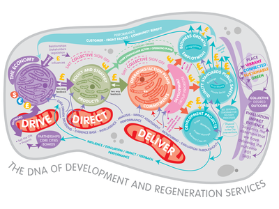 DNA of Development and Regeneration Services